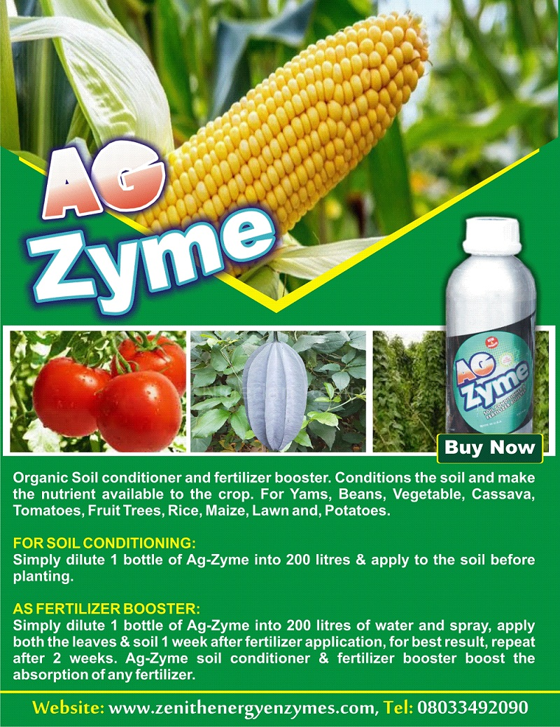 Zenith Energy Enzymes ad [object object] Front Page IMG 20200403 WA0009